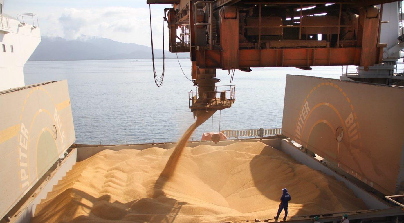 Descarga de grãos de soja em navio cargueiro atracado no cais.